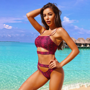 Animal Print Cut-out Underboob Two-piece Swimsuit